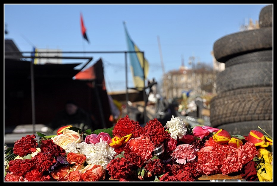 Kiev - Révolution de 2014 Euromaidan - Barricade couverte de fleurs