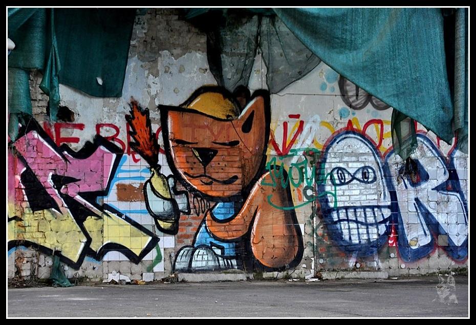 Kiev - Révolution de 2014 Euromaidan - Graff chat
